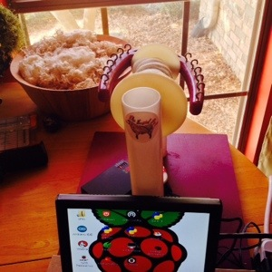 Spinning Wheel powered by Raspberry Pi