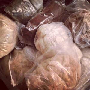 Bags of Alpaca