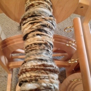 Alpaca Fiber Spinnig on Wheel