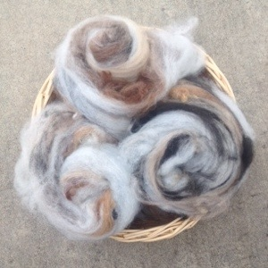 Carded Batts All Natural Aplaca