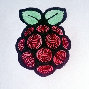 Raspberry sPIn Yarn Logo