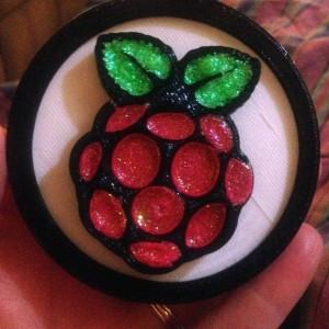 Raspberry Pi Medal